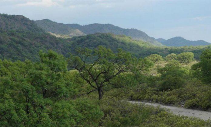 estancias pinas parque traslasierras Traslasierras Noticias - Buscan a dos hombres perdidos en la zona del Cerro Champaquí
