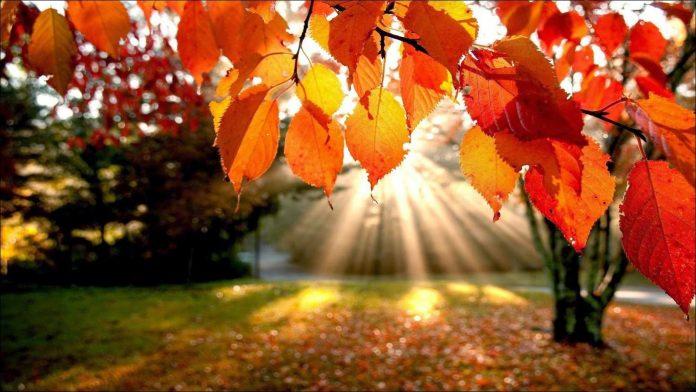 otoño - Feriado con buen tiempo en Alta Gracia