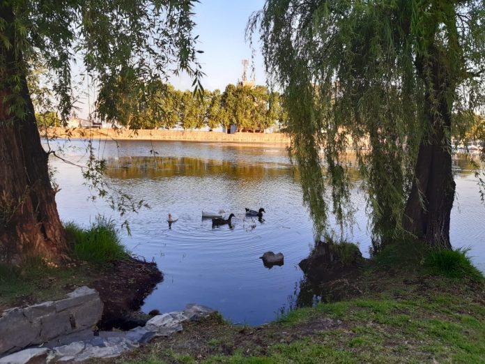 tajamar soleado buen clima despejado patos - Para el lunes se espera una máxima de 29º