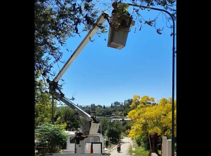operativos barriales VO LP EE - Se realizan operativos de reposición de luminarias en distintos barrios