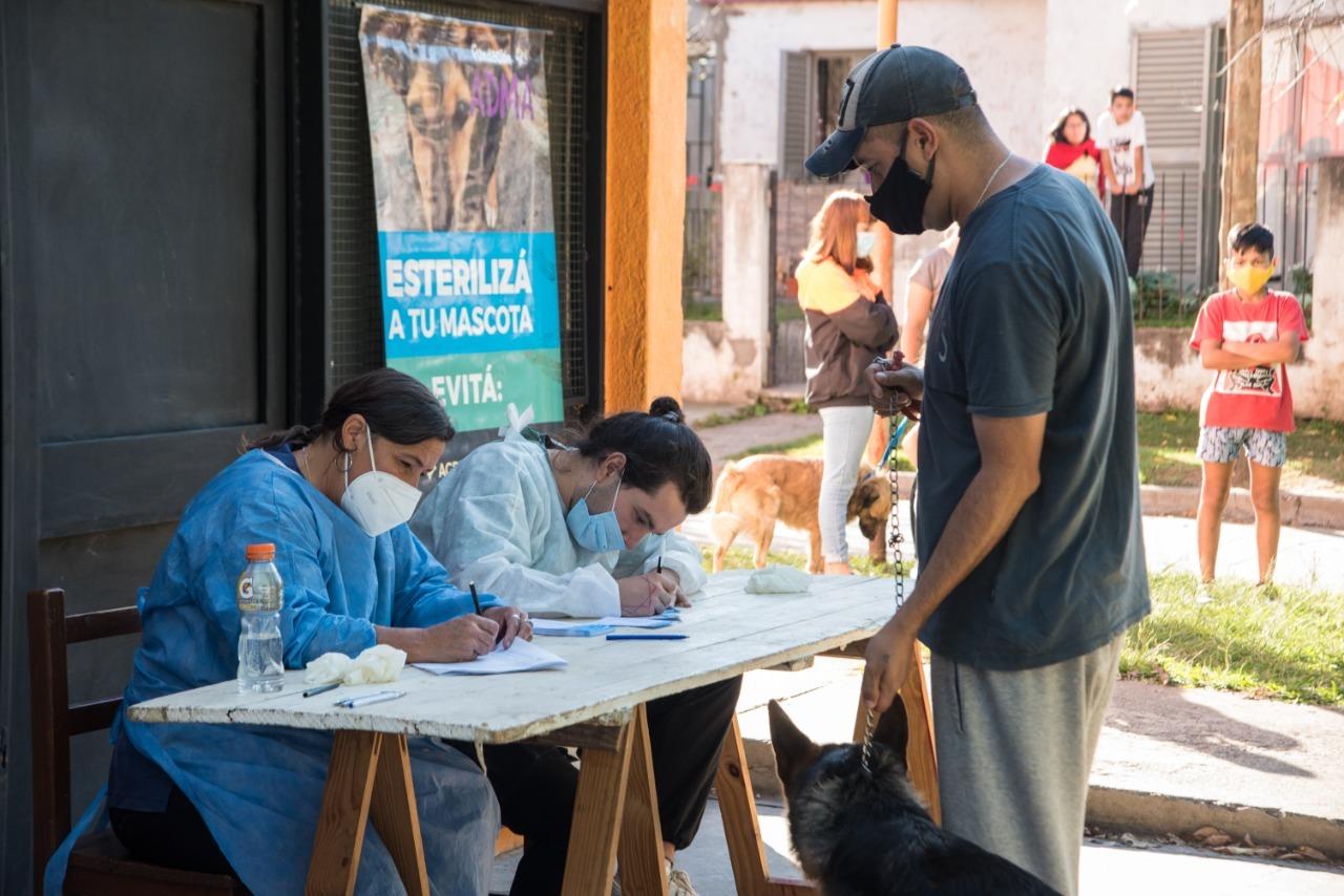vacunacion antirrabica - Continúa la campaña de vacunación antirrábica por los barrios de la ciudad