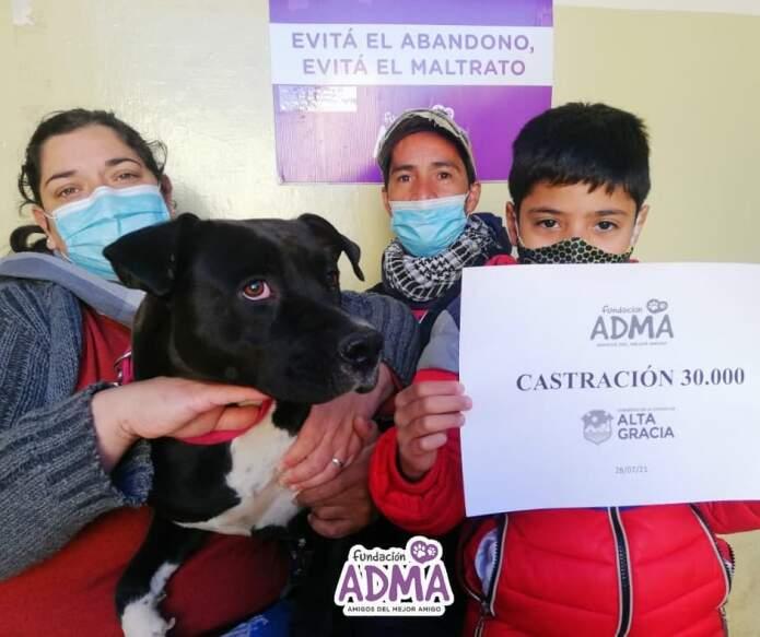 adma - ADMA llegó a las 30 mil castraciones