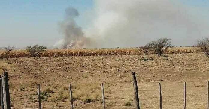 incendio malagueno - Alerta por riesgo de incendio en toda la región