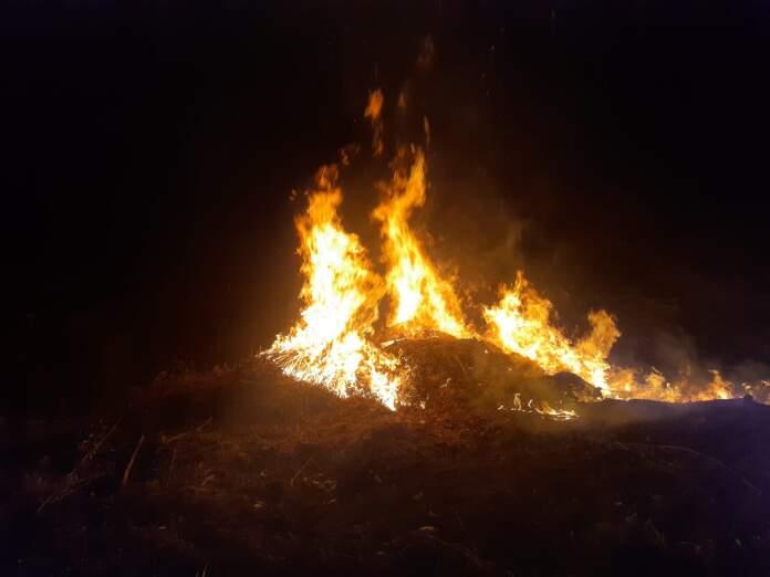 incendio los aromos - Un nuevo incendio se generó en un depósito de ramas