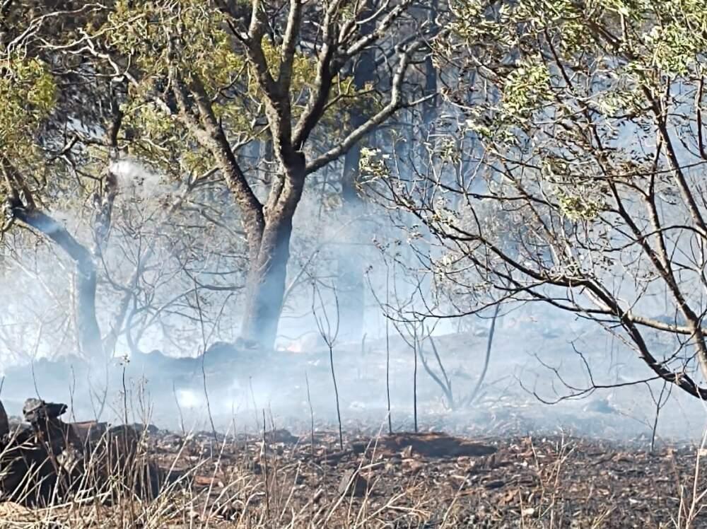 incendio potrero 2 - Continúan los focos de incendios en la región