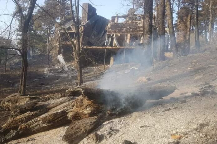 potrerillo de potrero - Incendios: comenzarán a trabajar en la remediación ambiental